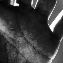 thumb[20091117-2893.jpg]